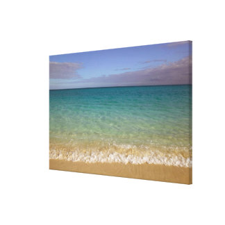 Turks and Caicos, Providenciales Island, Grace 2 Canvas Print