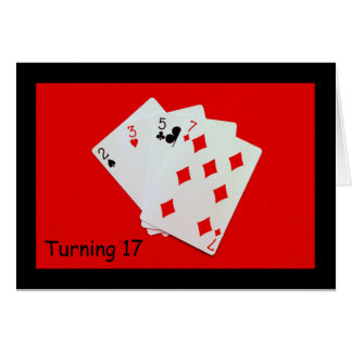 Turning 17 Is A Big Deal! Card
