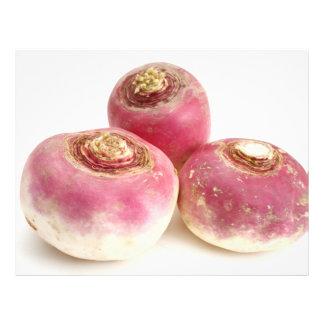 Turnips Full Color Flyer