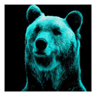 Turquoise and Black Grizzly Bear Portrait Poster