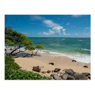 Turquoise Beach Postcard