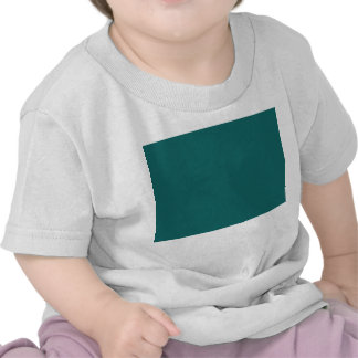 Turquoise blue-green bold tee shirts