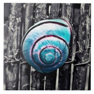 Turquoise snail shell art tile