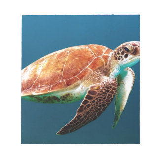 turtle-863 notepad