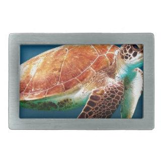 turtle-863 rectangular belt buckles