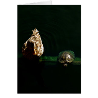Turtle and Duck Art Photograph Card
