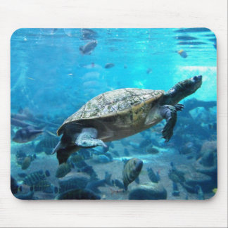 Turtle and fish mouse pad