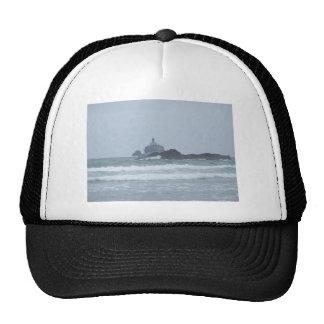 Turtle and lochness trucker hat