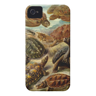 Turtle Barely There iPhone 4 Case