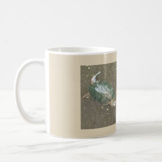 turtle coffe cup