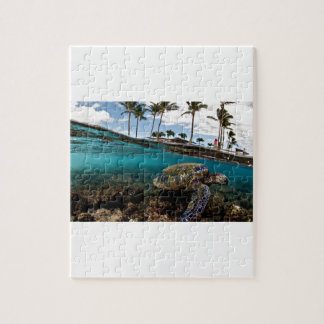 Turtle Crossing The Beach Rocks Jigsaw Puzzle
