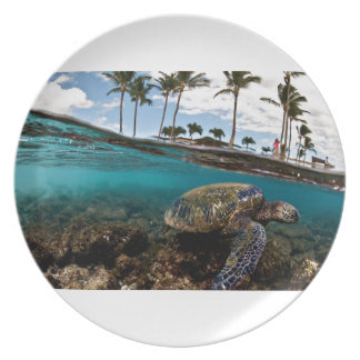 Turtle Crossing The Beach Rocks Plate