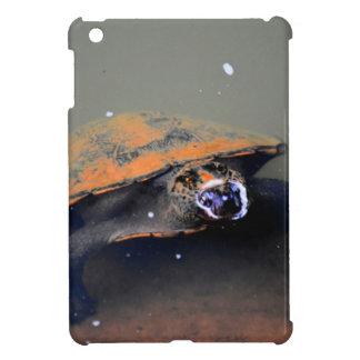 TURTLE EUNGELLA NATIONAL PARK AUSTRALIA iPad MINI CASES