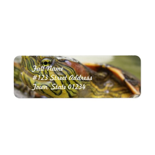 Turtle Identification Mailing Label