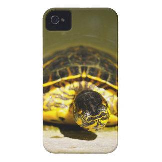Turtle iPhone 4 Case