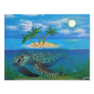 Turtle Island Photo Print