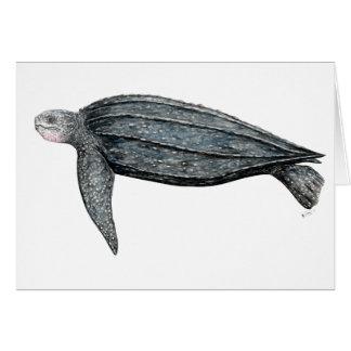 Turtle lute card
