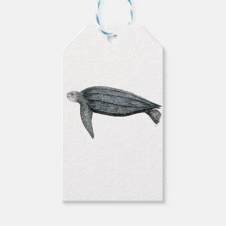 Turtle lute gift tags