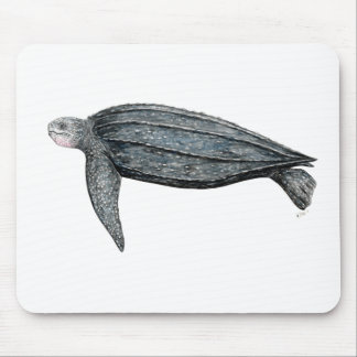 Turtle lute mouse pad