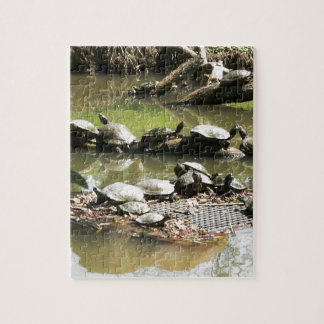 Turtle Network Jigsaw Puzzle