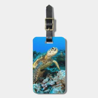 Turtle Pair Bag Tag