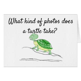 Turtle Photos - Shellfies Card