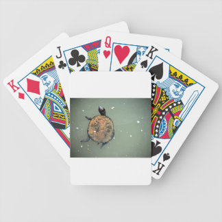 TURTLE QUEENSLAND AUSTRALIA BICYCLE PLAYING CARDS