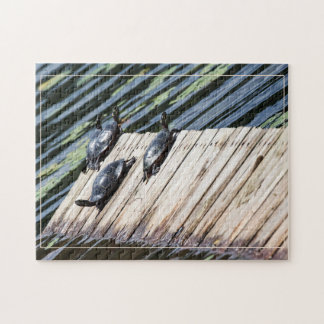 Turtle Rest Stop Jigsaw Puzzle