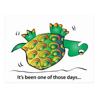 Turtle Rocking on his back Postcard