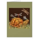 Turtle School bus card