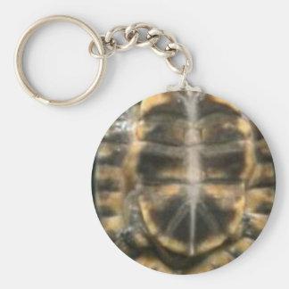 turtle shell basic round button keychain