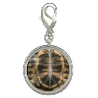 turtle shell photo charm