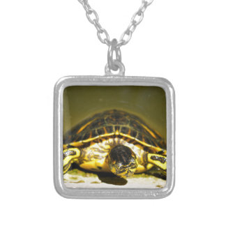 Turtle Silver Plated Necklace