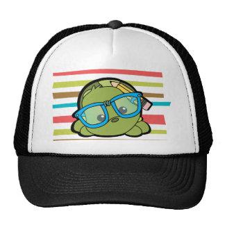 Turtle Smarty Hats