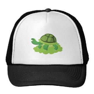turtle walking in the grass trucker hat