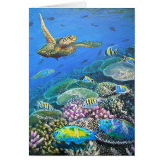 turtle with parrotfish card