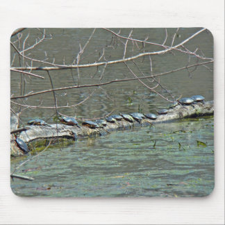 Turtle's Day Off Mouse Pad