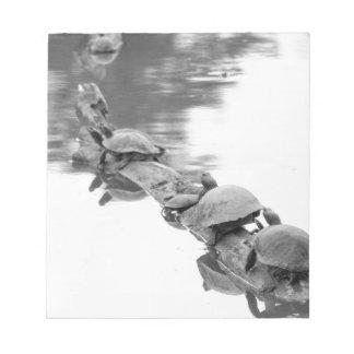 Turtles Notepad