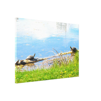 Turtles Wrapped Canvas