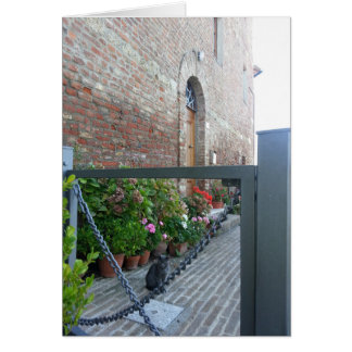 Tuscan Series Notecard: Gray Cat in the Garden Card