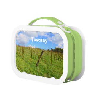 Tuscan Vineyard Lunch Boxes