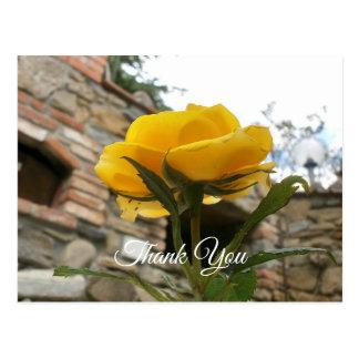 Tuscan yellow rose. Thank You. Postcard
