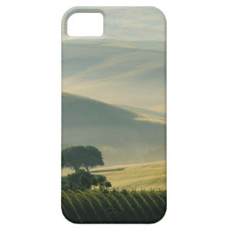 Tuscany hills iPhone 5 cases