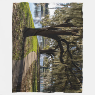 Tuscawilla Park Fleece Blanket