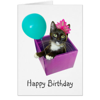 Tuxedo Cat Birthday Card