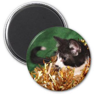 Tuxedo kitten Christmas Magnet