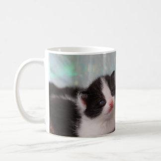 Tuxedo kittens mug