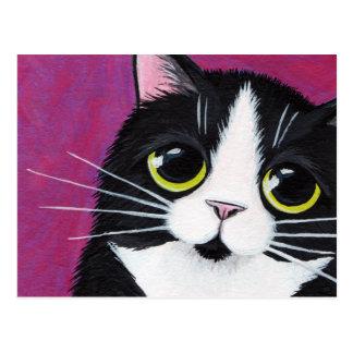 Tuxedo Kitty Cat On Pink Postcard