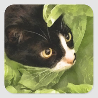 Tuxedo Kitty Hiding in Tissue Paper Square Sticker