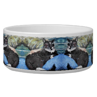 Tuxedo Kitty Pattern Dog Water Bowl